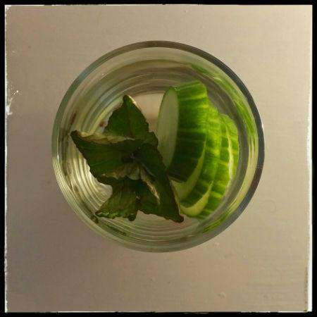 Cucumber_mint